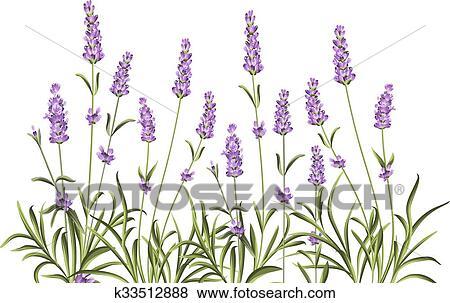 花輪 の ラベンダー Flowers クリップアート K33512888 Fotosearch