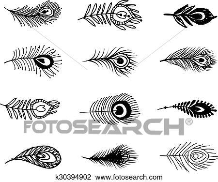 Pena Pavao Jogo Para Seu Desenho Clipart K30394902 Fotosearch