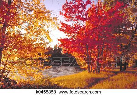 Bilder Herbst Farben K0455858 Suche Stockfotos Bilder Print
