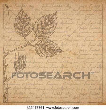 clipart of vintage old paper texture with frame and engraved slyle