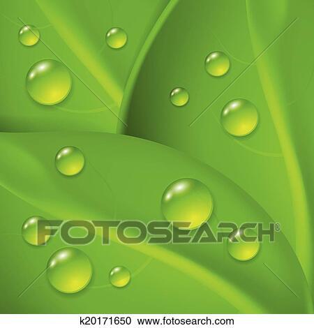 Sfondo Verde Con Mette Foglie E Goccia Di Rugiada Clipart