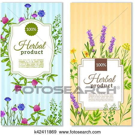Herbs And Wild Flowers Banners Clip Art K42411869 Fotosearch
