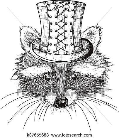 Clipart Of Hand Drawn Raccoon K37655683