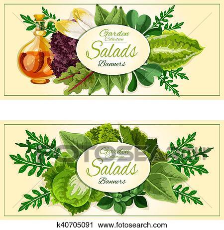 Salat Grün Und Gemüse Blätter Banner Satz Clipart