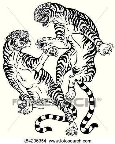 Clipart Bataille De Deux Tigres Noir Blanc K54206354