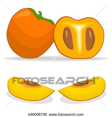 yellow fruit persimmon clipart k46006730 fotosearch stock photography and stock footage