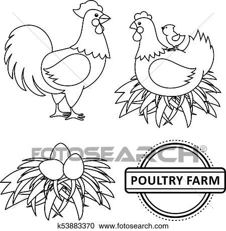 Clipart - vector, plano, poutry, granja, pollo, conjunto k53883370 ...