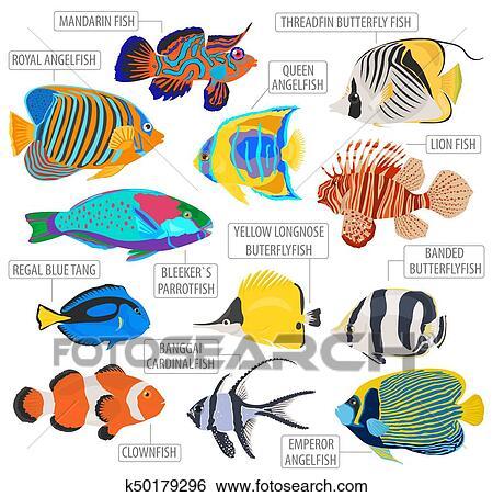 clip art of freshwater aquarium fish breeds icon set flat