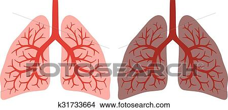 clipart of healthy lung and smokers lung k31733664 search clip art