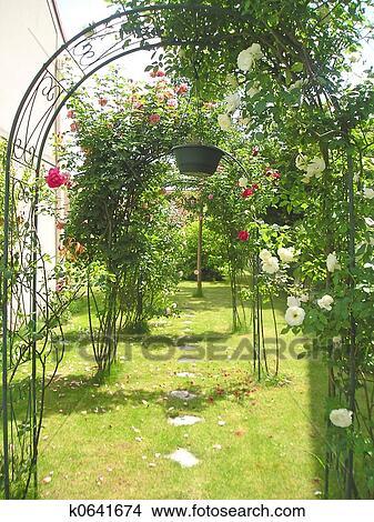 Coleccion De Foto Jardin Arcos Y Arcadas Con Rosas Y Otro - Arcos-de-jardin