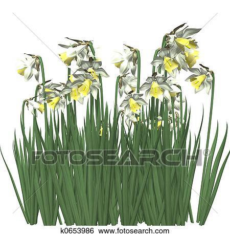 春の花 3d イラスト K0653986 Fotosearch