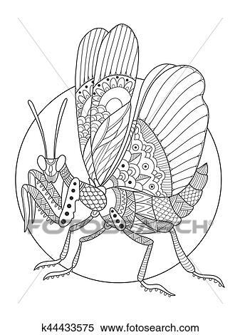 Mantis Insekt Ausmalbilder Vektor Abbildung Clipart