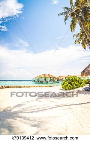 Beach Chair With Tropical Maldives
