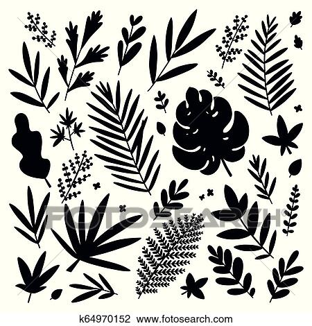 Tropical Leaves Black Silhouettes Vector Set Clipart K64970152 Fotosearch Tropical silhouette seamless vector pattern. tropical leaves black silhouettes