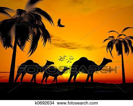 Dessins d sert coucher soleil egypte k0692634 - Dessin coucher de soleil ...