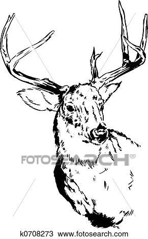 Kresba Srnec Sob K0708273 Prehľadavaj Klipart Ilustracie
