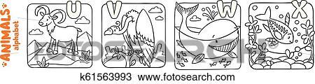 Tiere Alphabet Oder Abc Ausmalbilder Satz Clipart