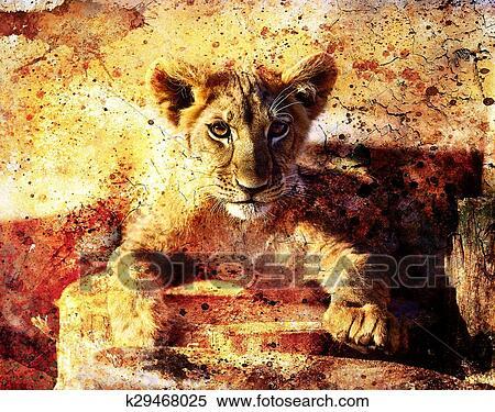 Stockillustration - løve unge 94ec004c25f1f