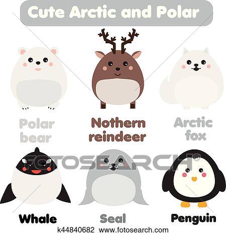 Clipart Mignon Kawaii Arctique Et Polaire Animals Enfants