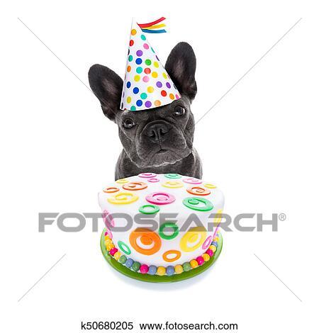 Stock Afbeelding Gelukkige Verjaardag Hond En Taart K50680205