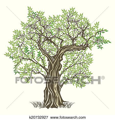 طموح خلع السجن طريقة رسم شجرة زيتون Dsvdedommel Com