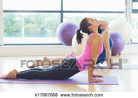 Fit Women Doing The Cobra Pose In Fitness Studio Stock Photo K17667668 Fotosearch Fit women over 40 is a strength training community of women who desire to live a fit and healthy. fotosearch