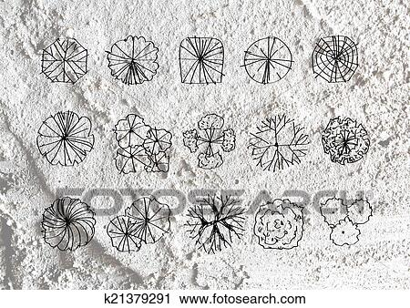 Clipart Of Trees Top View For Architecture Landscape Design Projects