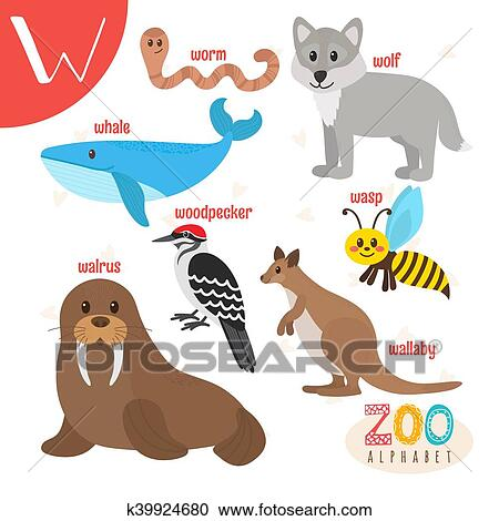 Clipart Of Letter W Cute Animals Funny Cartoon Animals In Vector