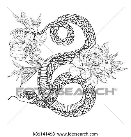 Clipart - schlangen, und, flowers., tätowierung, kunst, färbung ...