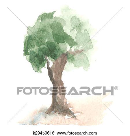 Clip Art Vecchio Acquarello Albero Con Fogliame Verde Su