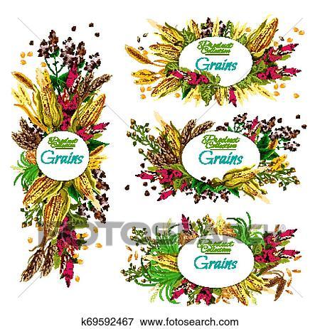 Cereal clipart cereal grain, Cereal cereal grain Transparent FREE for  download on WebStockReview 2020