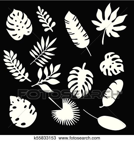 Palm Leaves Silhouettes Set Isolated On Black Background Tropical Leaf Silhouette Elements Set Isolated Palm Fan Palm Monstera Banana Leaves Vector Illustration In Black And White Colors Eps10 Clipart K55833153 Fotosearch Download premium vector of rectangle gold frame on pink and blue leaf pattern background vector by wan about 936209, &, background, l. palm leaves silhouettes set isolated on