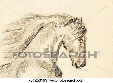 dessin dessiner crayon cheval sur vieux papier original main draw k34253193. Black Bedroom Furniture Sets. Home Design Ideas