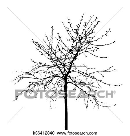 Dead Tree Without Leaves Vector Illustration Clipart