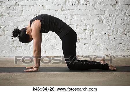young yogi attractive woman in cat pose white loft