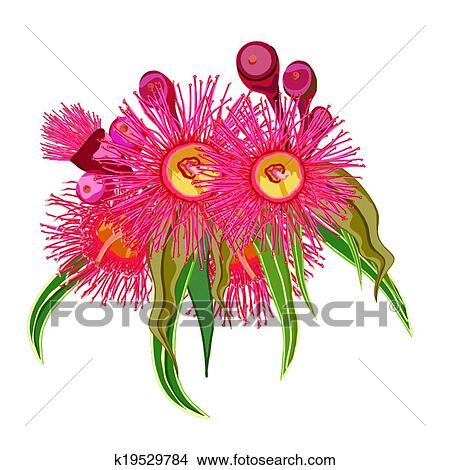 Clipart Of Eucalyptus Bunch Of Pink Flowers K19529784 Search Clip