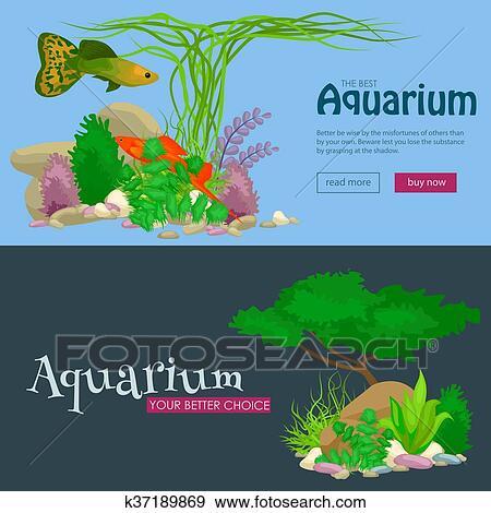 Clip Art Set Isolato Colorito Coralli E Alghe Vettore