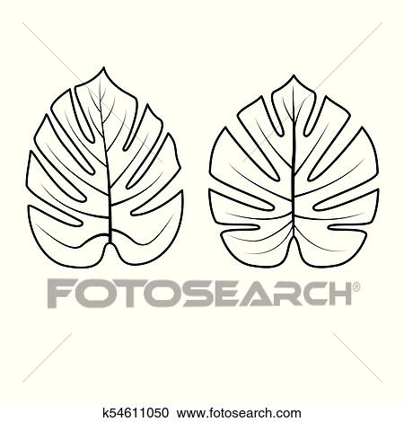 Tropical, hojas, collection., vector, illustration. Clipart
