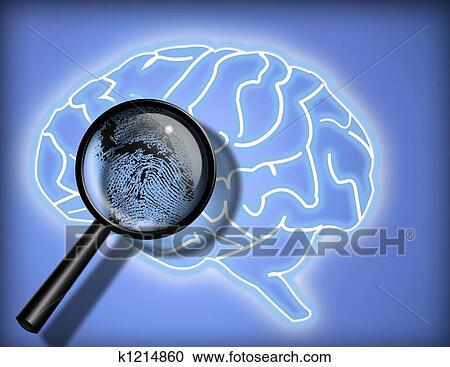 Banco de ilustraes crebro personalidade identidade banco de ilustraes crebro personalidade identidade k1214860 busca de imagens de vetor grfico desenhos clip art ilustraes k1214860 ccuart Choice Image