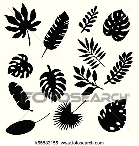 Palm Leaves Silhouettes Set Isolated On White Background Tropical Leaf Silhouette Elements Set Isolated Palm Fan Palm Monstera Banana Leaves Vector Illustration In Black And White Colors Eps10 Clipart K55833155 Fotosearch Free vector icons in svg, psd, png, eps and icon font. palm leaves silhouettes set isolated on