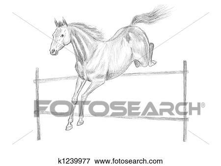 Stock Illustration Springendes Pferd Zeichnung K1239977 Suche