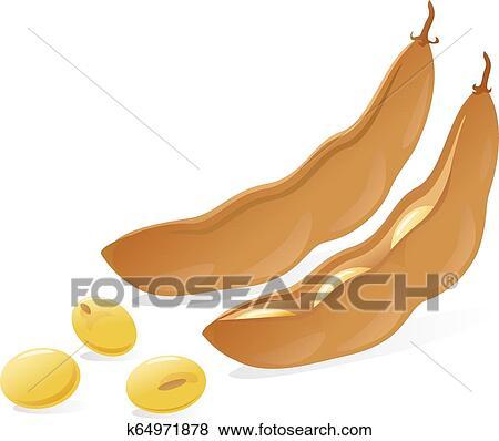Soybean pod brown illustration Clip Art | k64971878 ...