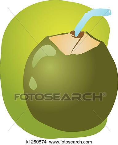 Drawings Of Young Green Coconut K1250574