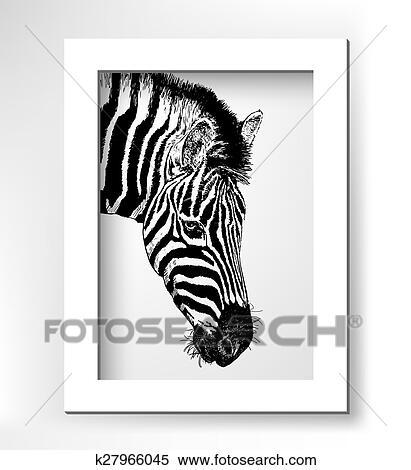 Clipart Grafica Profilo Testa Zebra Digitale Schizzo Di