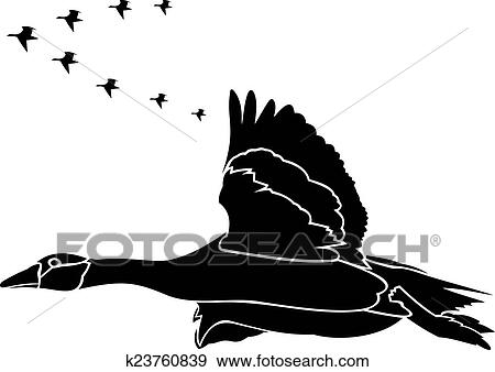 Clip Art Zugvögel K23760839 Suche Clipart Poster Illustrationen