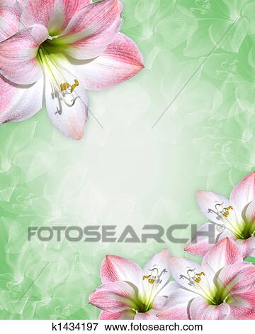 Stock Illustration Of Amaryllis Pink Flowers Border K1434197