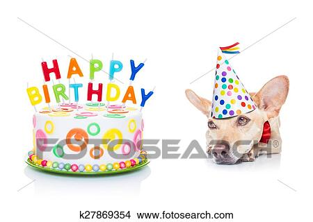 Awesome Happy Birthday Dog Picture K27869354 Fotosearch Funny Birthday Cards Online Unhofree Goldxyz