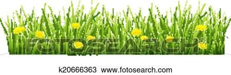 Erba Con Fiori Gialli.Erba Con Fiori Gialli Clipart K20666363 Fotosearch