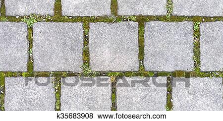 Immagini quadrato pavimentazione con erba hd seamless