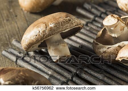 Raw Organic Portobello Mushrooms Stock Image K56756962 Fotosearch